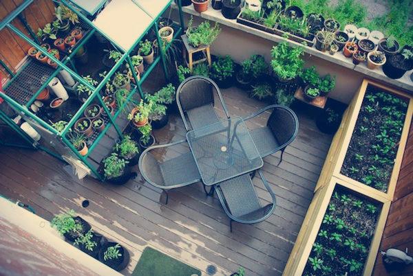 horta jardim na varanda:Comece Pequeno e Depois Aumente – Reutilize e Recicle ao Máximo