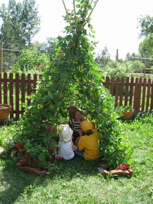 construir gruta jardim : construir gruta jardim:Bean Pole Tee Pee