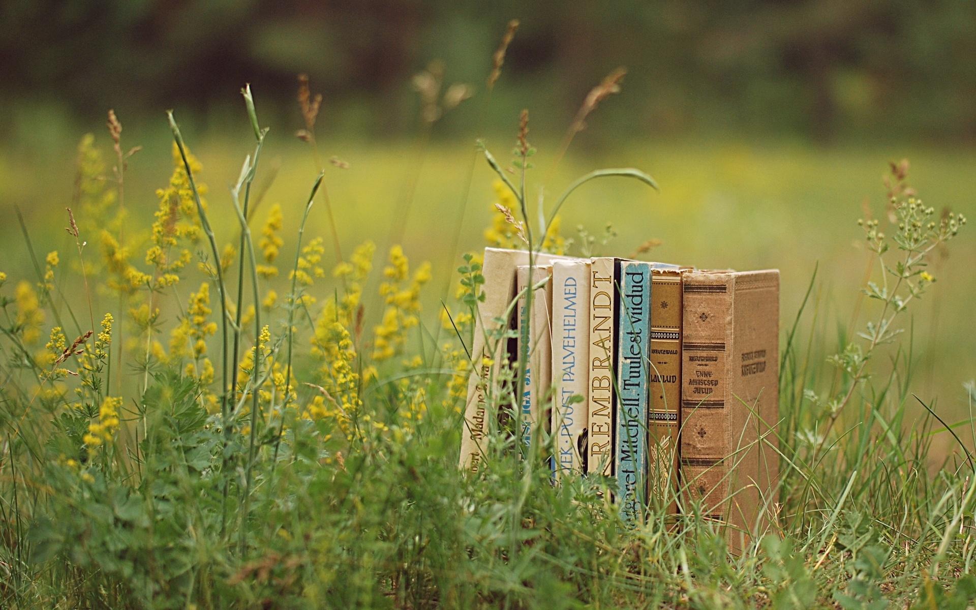 horta e jardim livro : horta e jardim livro:10 Livros para te inspirar a mudar de vida – Jardim do Mundo