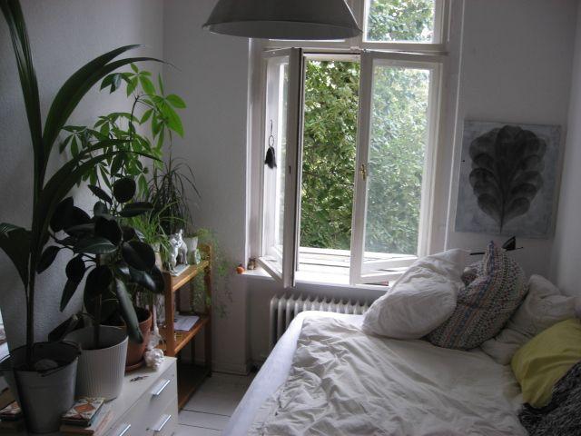 unique-picture-moon-to-moon-tumblr-plants-house-pinterest